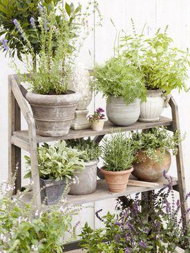 Taras I Balkon Galeria Wnetrz Aranzacja I Wystroj Wnetrz Herb Garden Pallet Cottage Front Garden Small Balcony Garden