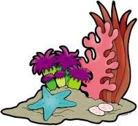 coral reef clipart google search vbs 2016 submerged pinterest rh pinterest ca coral reef animals clipart images coral reef clipart