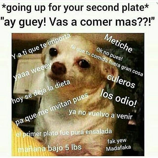 f33bf0cb1b6cda26d477676c95622935 metiche!! being cuban pinterest mexicans, spanish and memes
