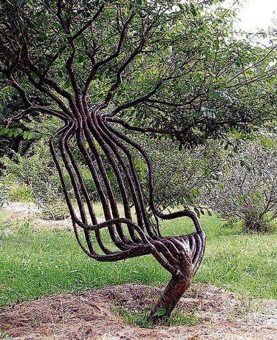 Unique Tree http://royalmlm.wellnesscoffee.eu/financial_independence