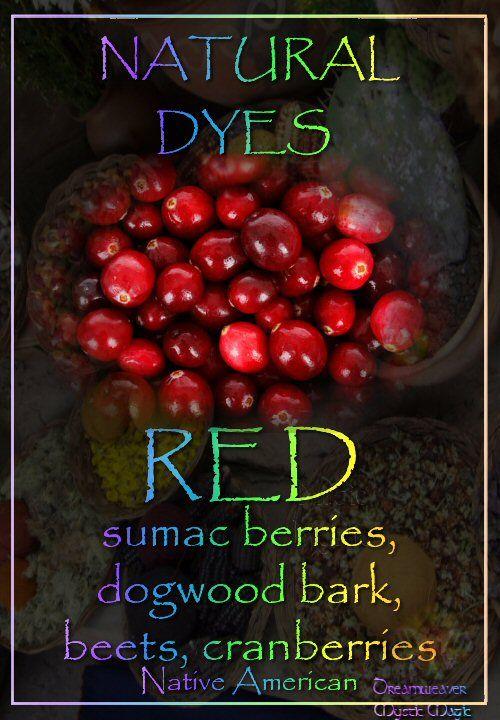 RED - sumac berries, dogwood bark, beets, cranberries