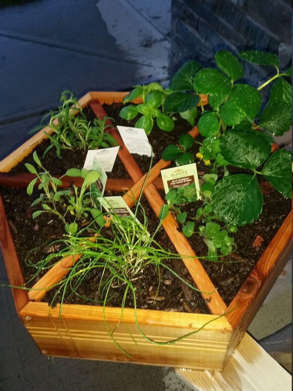 Handmade cedar herb planter gift for gardener made in