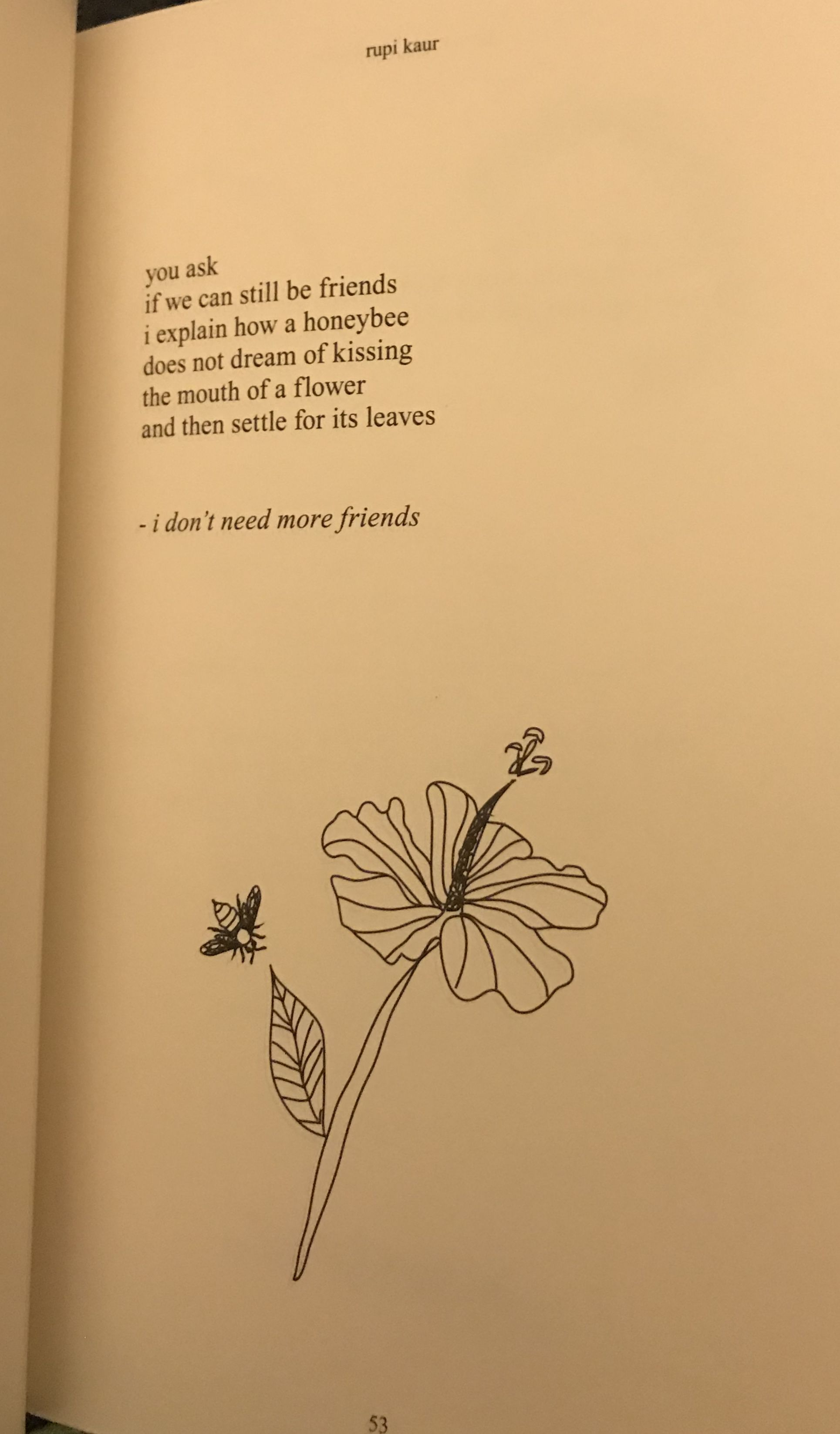 Rupi Kaur The Sun And Her Flowers I Dont Need More Friends Milk