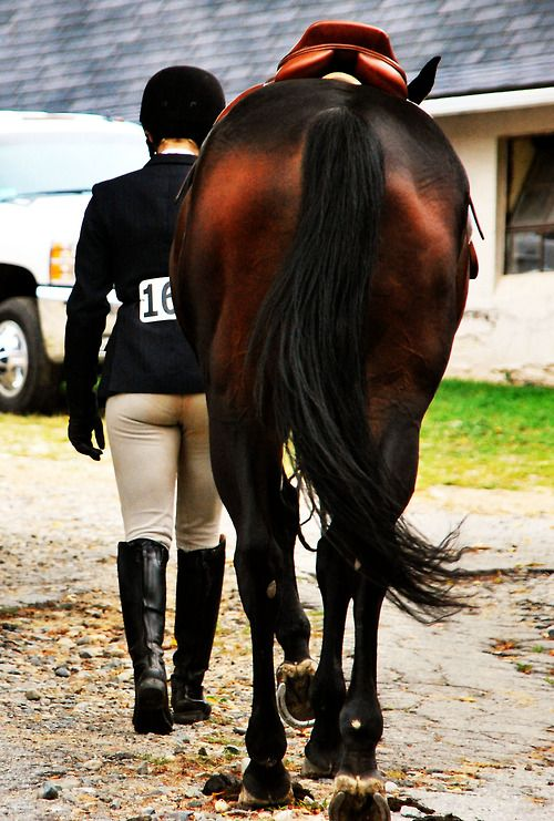 Pony Kisses and Perfect Distances