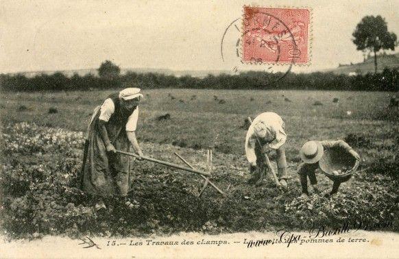 Ane Cartes Postales Anciennes Carte Postale Photo En Noir Photo Noir Et Blanc