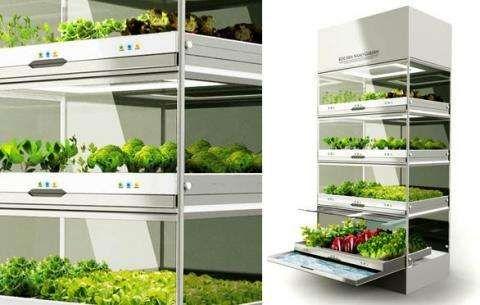 Hydroponic Indoor Gardens Home Decor Ideas Growing Vegetables