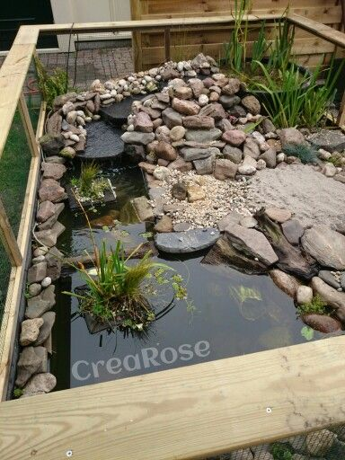 My own turtle pond onze eigen schildpadden vijver tuin tips for the garden for Construction habitat