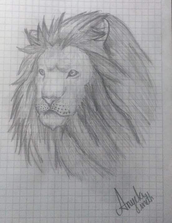Una belleza del reino animal