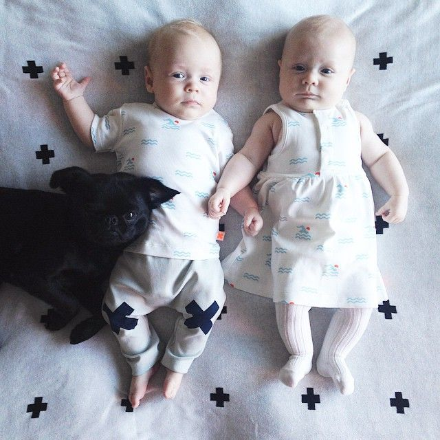 Can't stop#petitbrabancon #tinycottons #twins #tvillingar