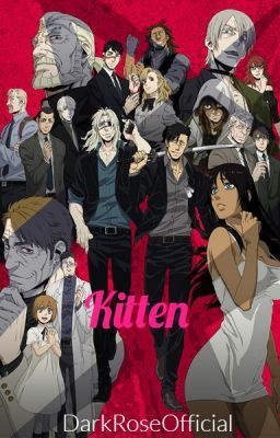 Kitten The Meeting With Images Gangsta Anime