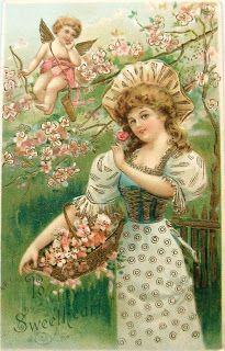 postcardiva postcard blog: Valentine CUPIDS