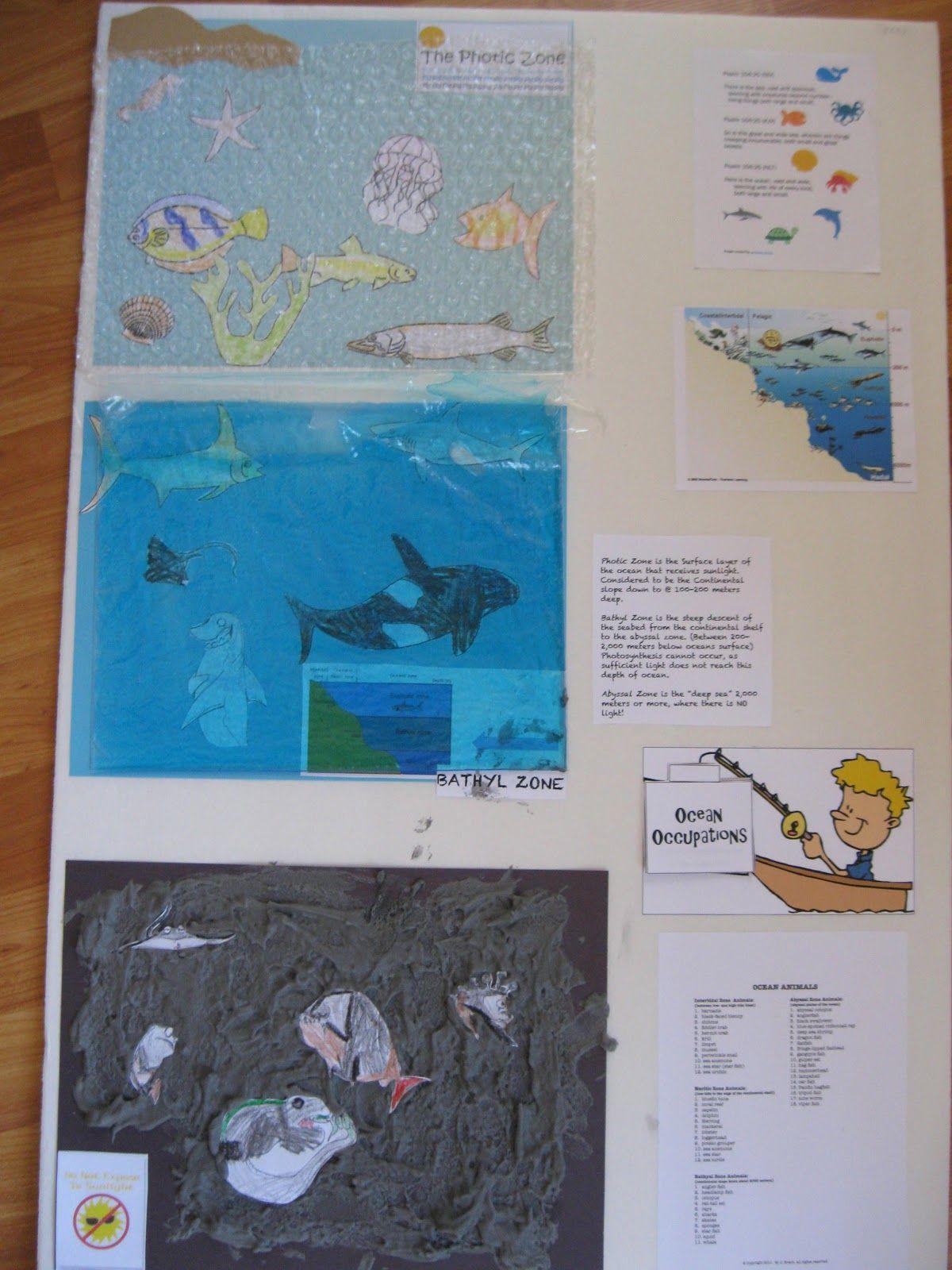 Solagratiamom: Cycle 1 week 19 Ocean zones