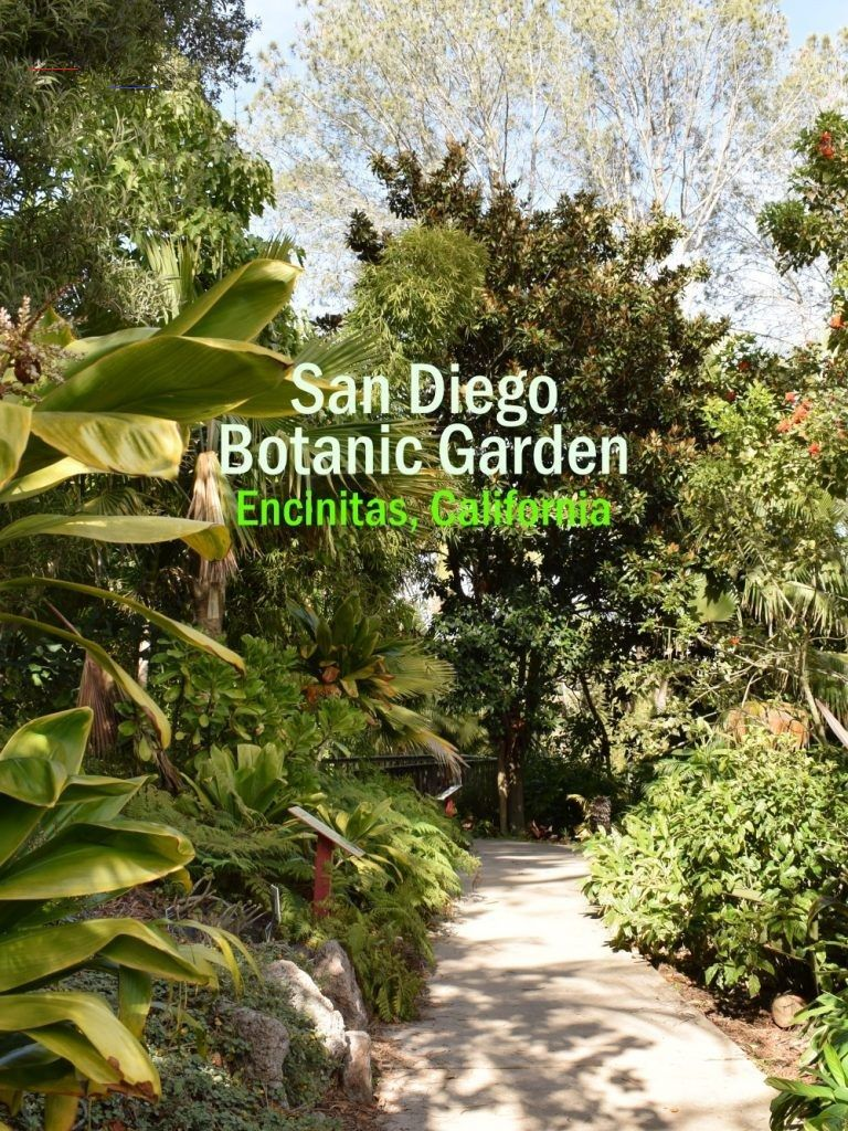 San Diego Botanical Gardens Free Tuesday