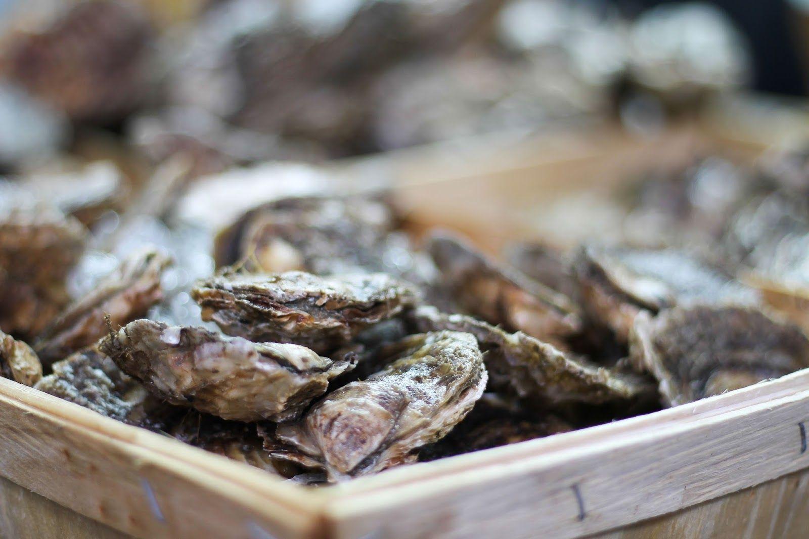 London Travel für Foodies: Borough Market, Austern - oysters.