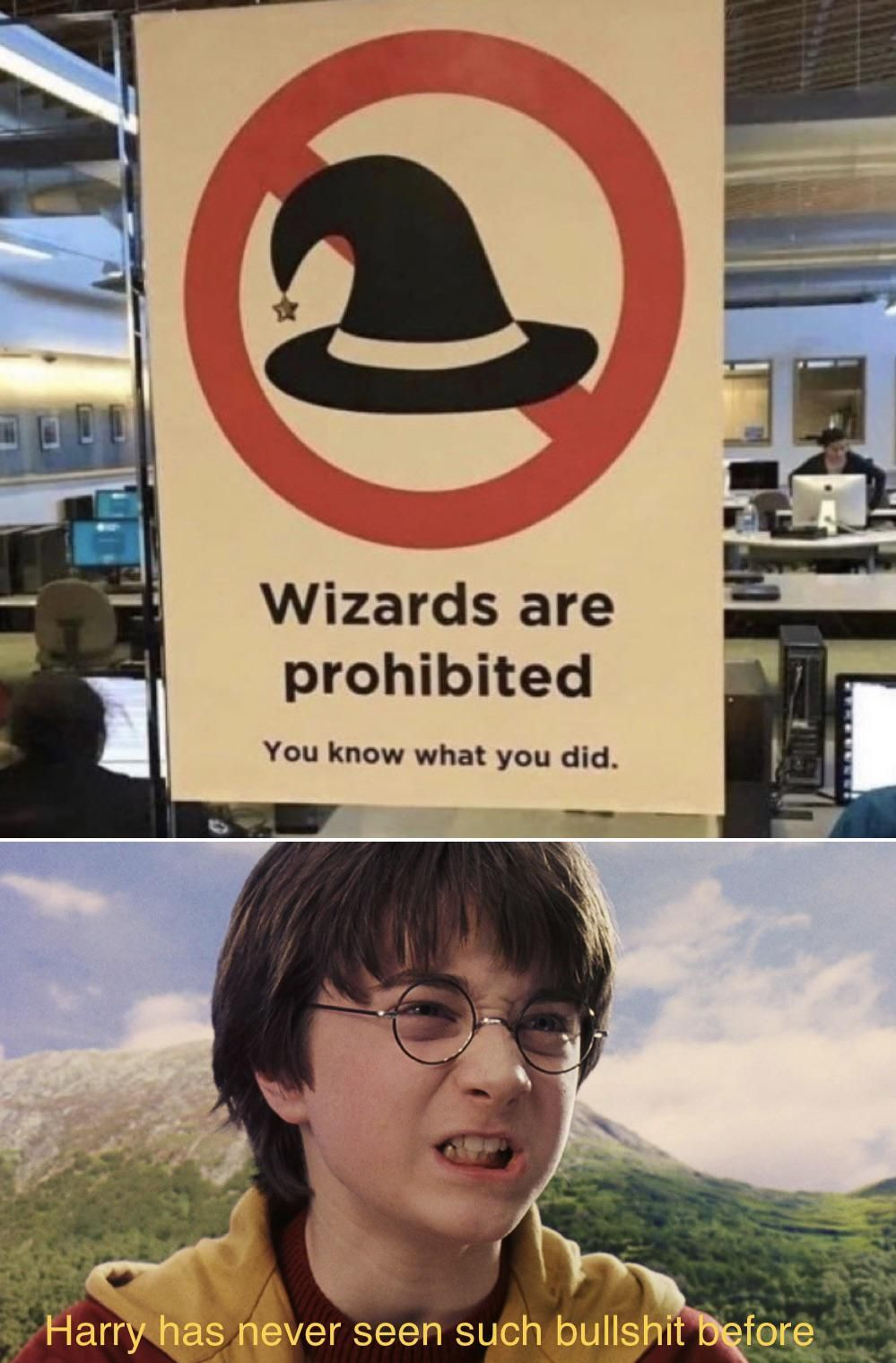 Harry Potter And The Audacity Of This Btch Funny Memes Harry Potter Memes