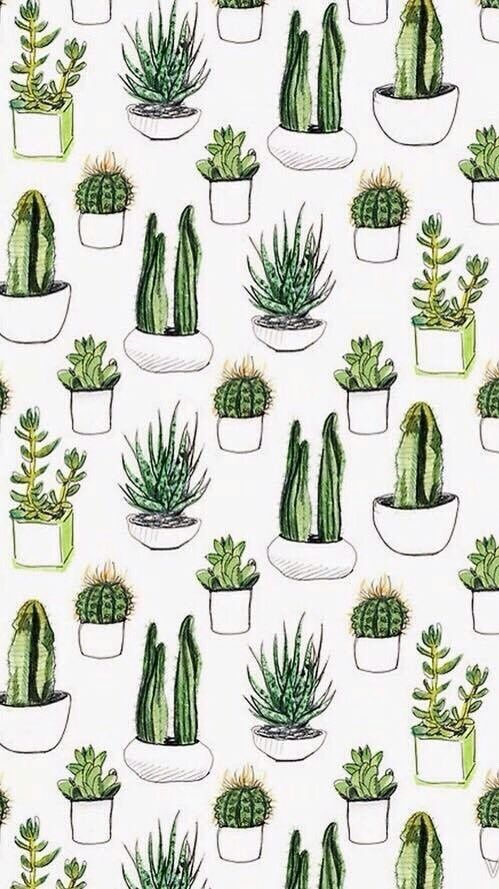 Background Fondos Green Pattern Plants Sfondi Tumblr Wallpaper First Set On Favim