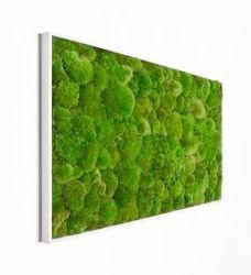 Mooswand aus Islandmoos im Greenbop Online Shop kaufen