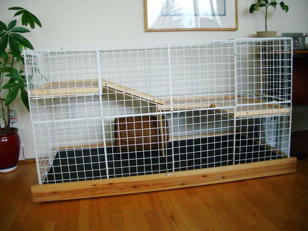 Bunny condos in building the biggest and fanciest for Design indoor rabbit cages