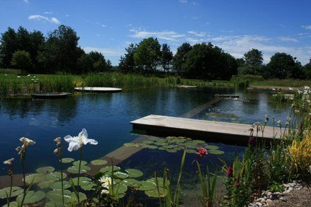 resultado de imagen de construccion piscinas naturales