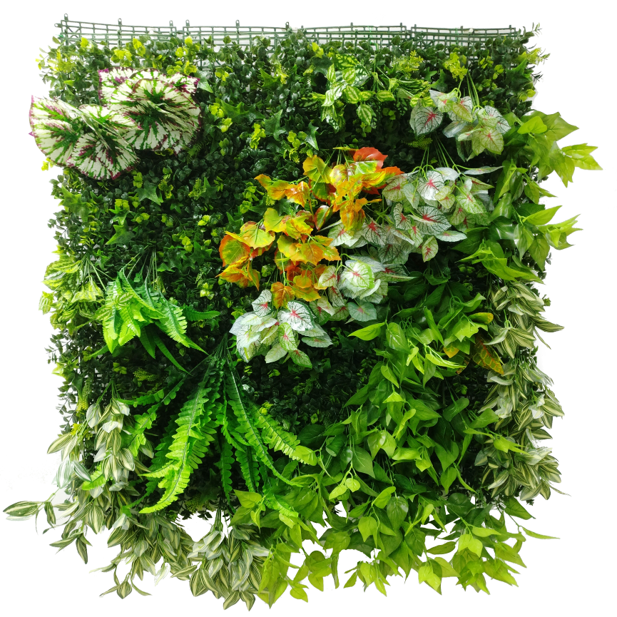 Image Result For Blanket Plant Wall