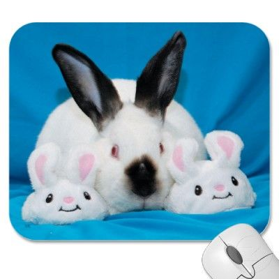 Bunny Slippers Mouse Pads