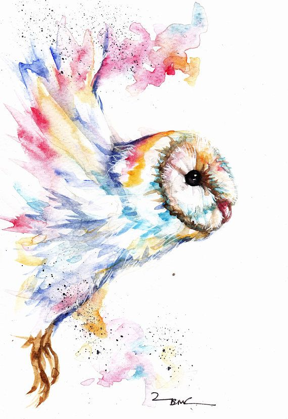 Barn Owl Original Watercolour Print Greeting Card Frammed By