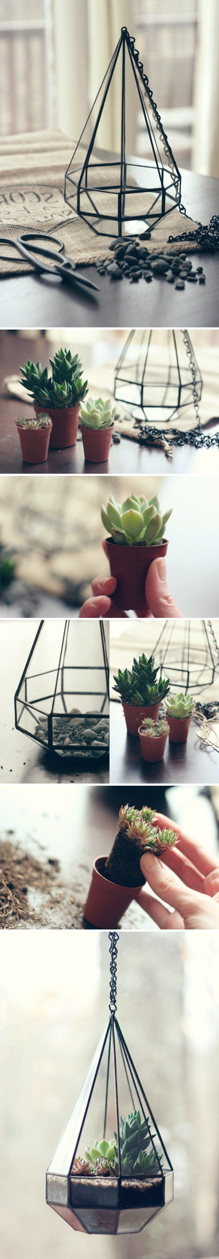 Terrarium for plants  tutorial to do it and more than 70 super models