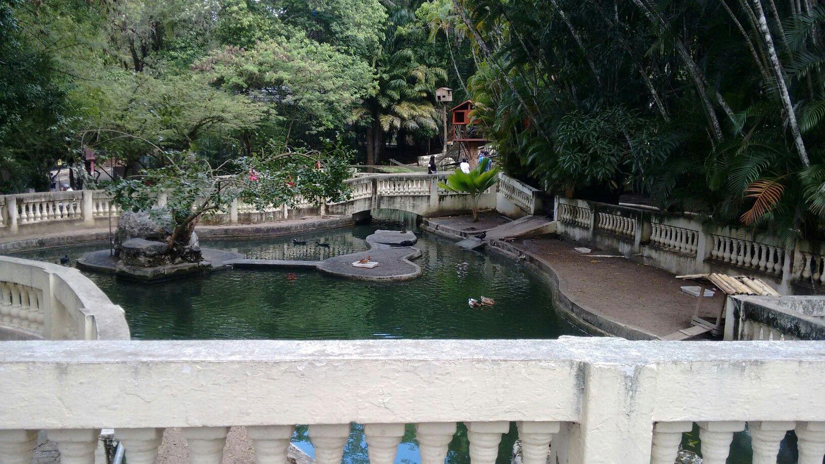 O Parque Zoobotânico Arruda Câmara é um jardim zoobotânico localizado em João Pessoa, Paraíba.