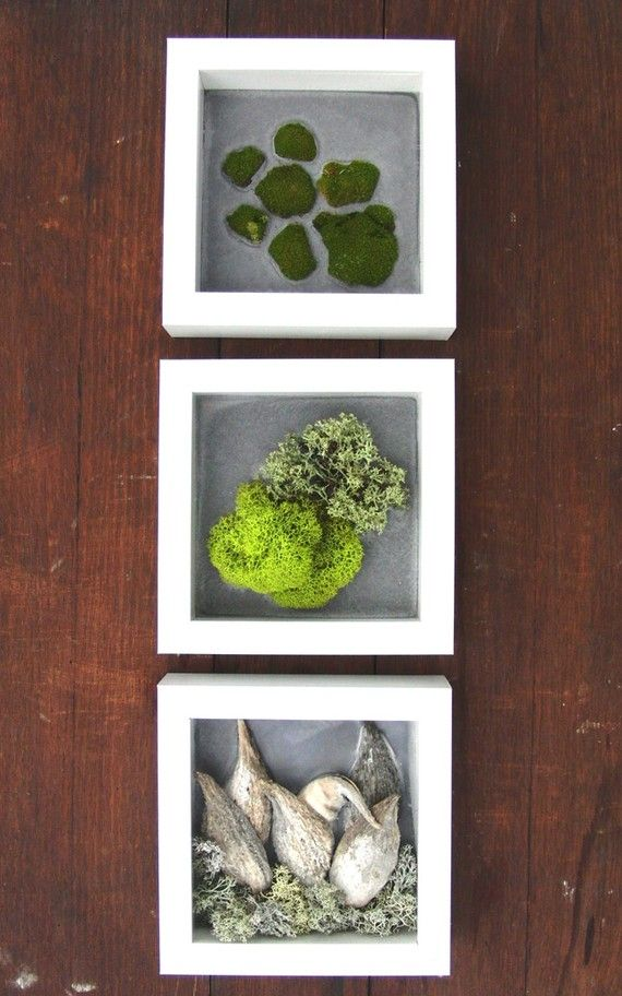I'm not a big fan on the moss, but I must remember to utilize these shadow boxes for other things...