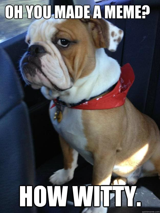 oh you made a meme how witty bulldog - 20 Cute And Funny Bulldog Memes #funnybulldog