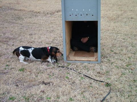 Ensler Bark Box Training Equipment Search And Rescue Canine