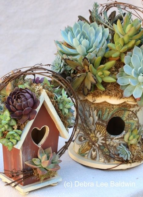 Designed by Debra Lee Baldwin - use the little birdhouses we have, build up the roof and plant with succulents