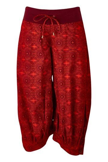69319db52585 Boom Shankar 50s dresses Guru Pant - Womens Pants at Birdsnest Online