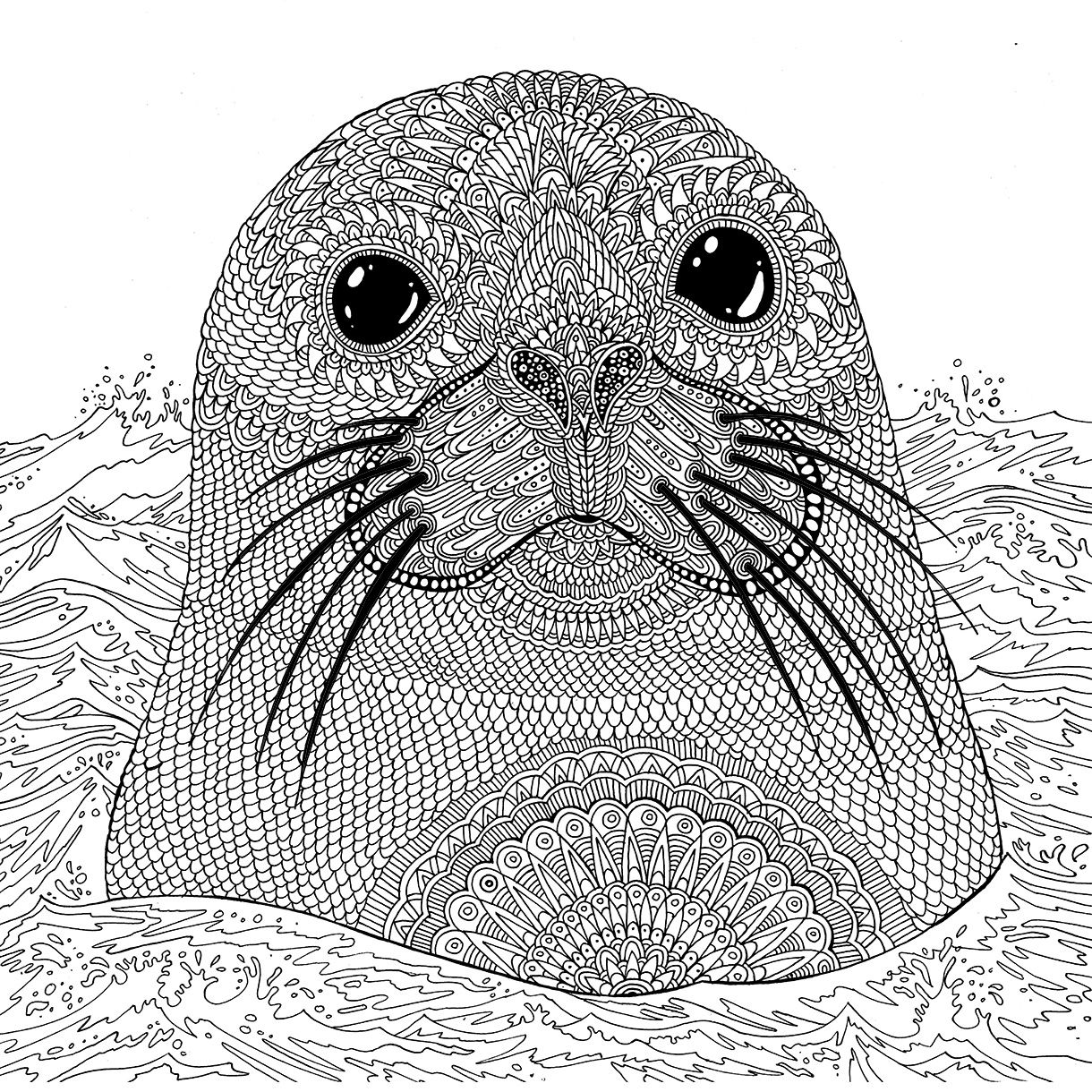 Seal The Aquarium Colouring Book Richard Merritt Seal Adultcolouring Colouringbook Aquarium Illustration Rich Animal Coloring Pages Sea Animals Color