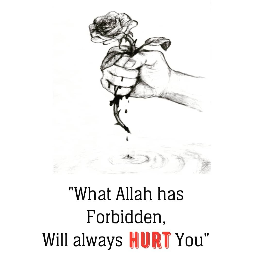 Pin On Quranic Quotes