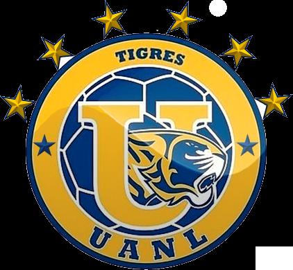 Pin en Tigres Campeon