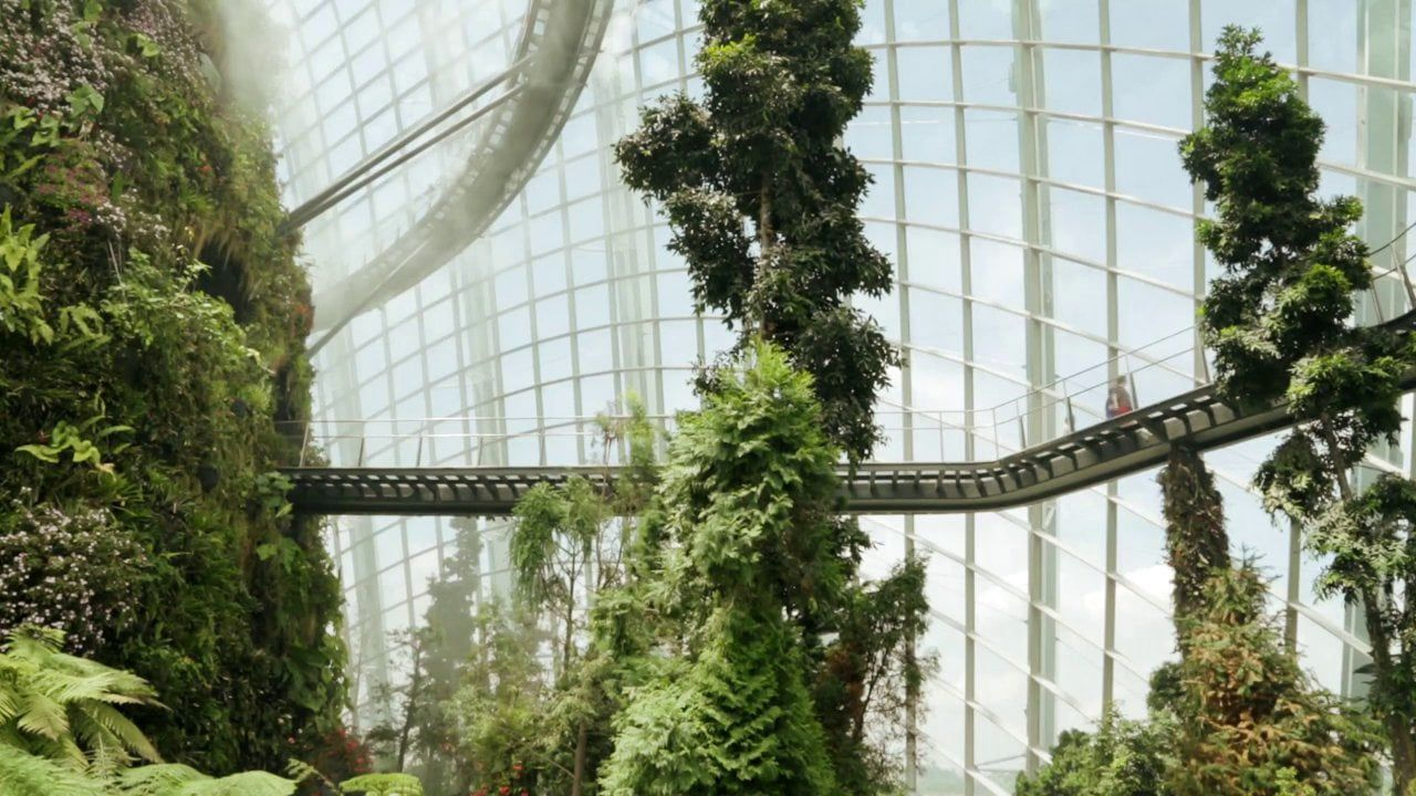 Wilkinson Eyre's cooled conservatories at Gardens by the