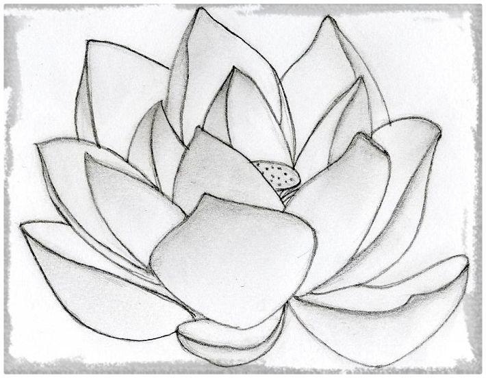 Resultado De Imagen Para Dibujo De Un Jardin De Rosas A Lapiz