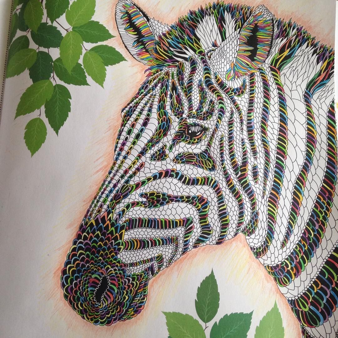 Just finished my #themenagerie zebra #rainbow #colouring #pencils ...
