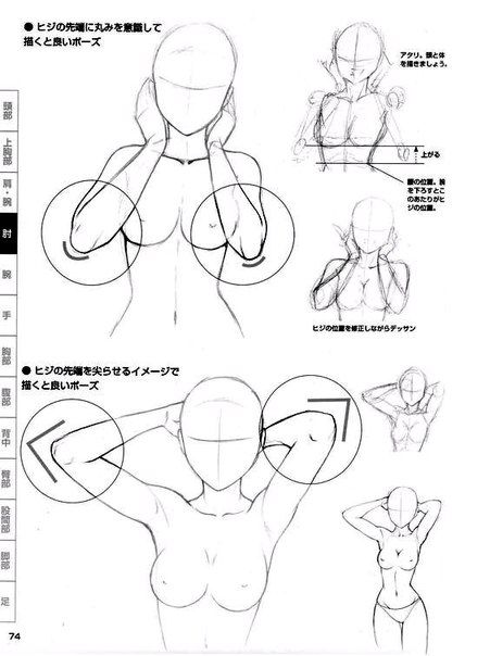 Pin de Huroto Chan en Anatomias | Pinterest | Dibujo, Anatomía y Bocetos