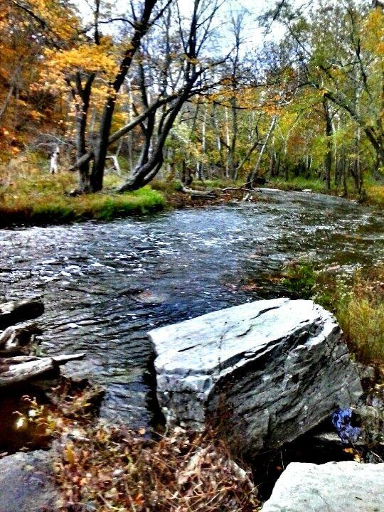Creek at cataract