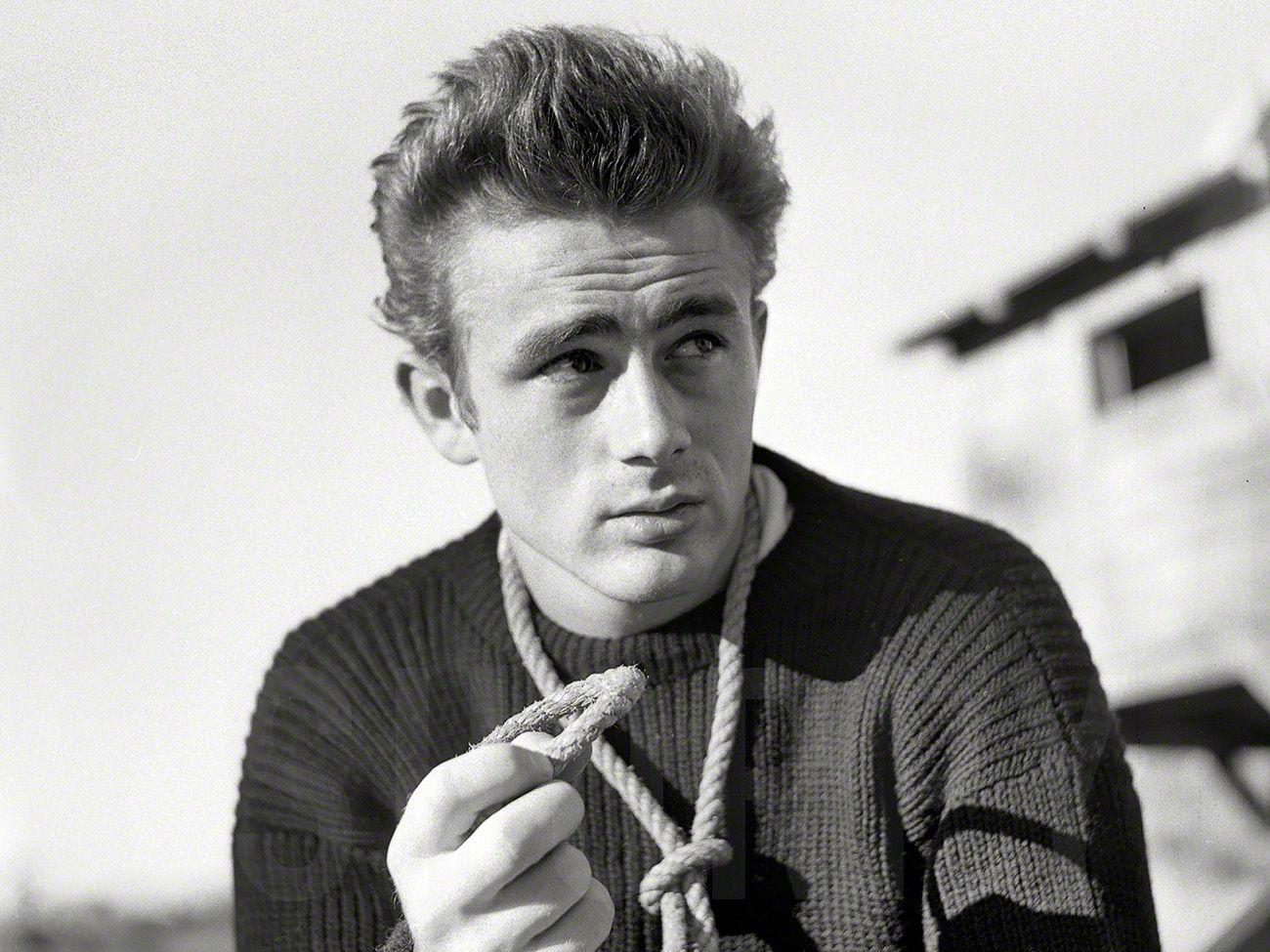 james dean rope - Google Search