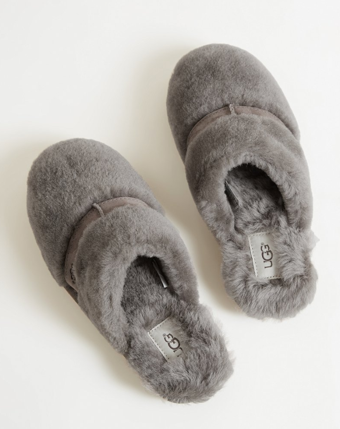 bb5ae28bc1f Cozy Slippers : Ugg Dalia Slipper | Buckle | Women's Shoes in 2019 ...