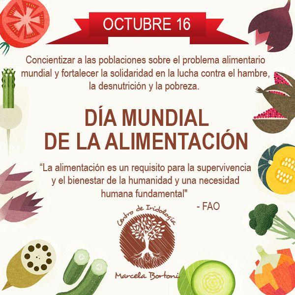 Dia Mundial De La Alimentacion Dia De La Alimentacion Dia Alimentacion Alimentacion