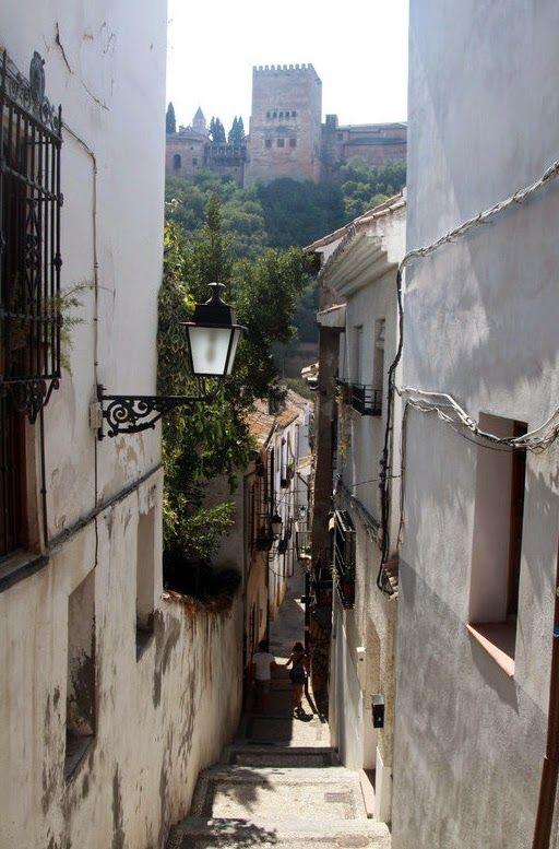 Granada: Luz, Color y Literatura: MIGUEL CARRASCOSA SALAS. ALBAICINERO DE PRO