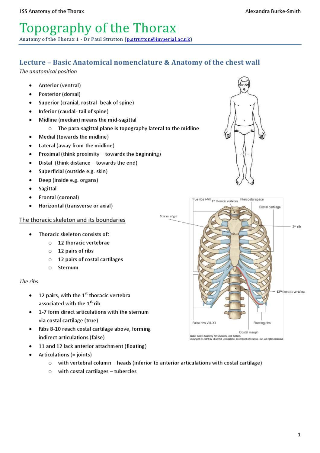 Alexs Anatomy Of The Thorax Cpc Exam Review Anatomy Exam