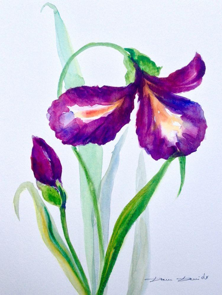 Details Sur Aquarelle Originale Dam Domido Iris Fleurs Flowers
