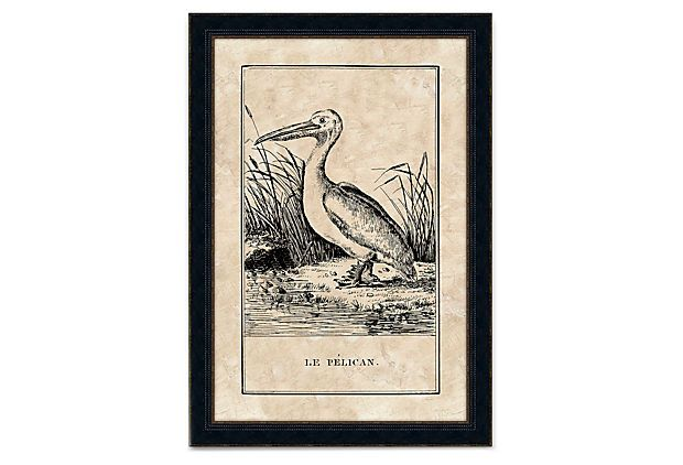 Le Pelican on OneKingsLane.com