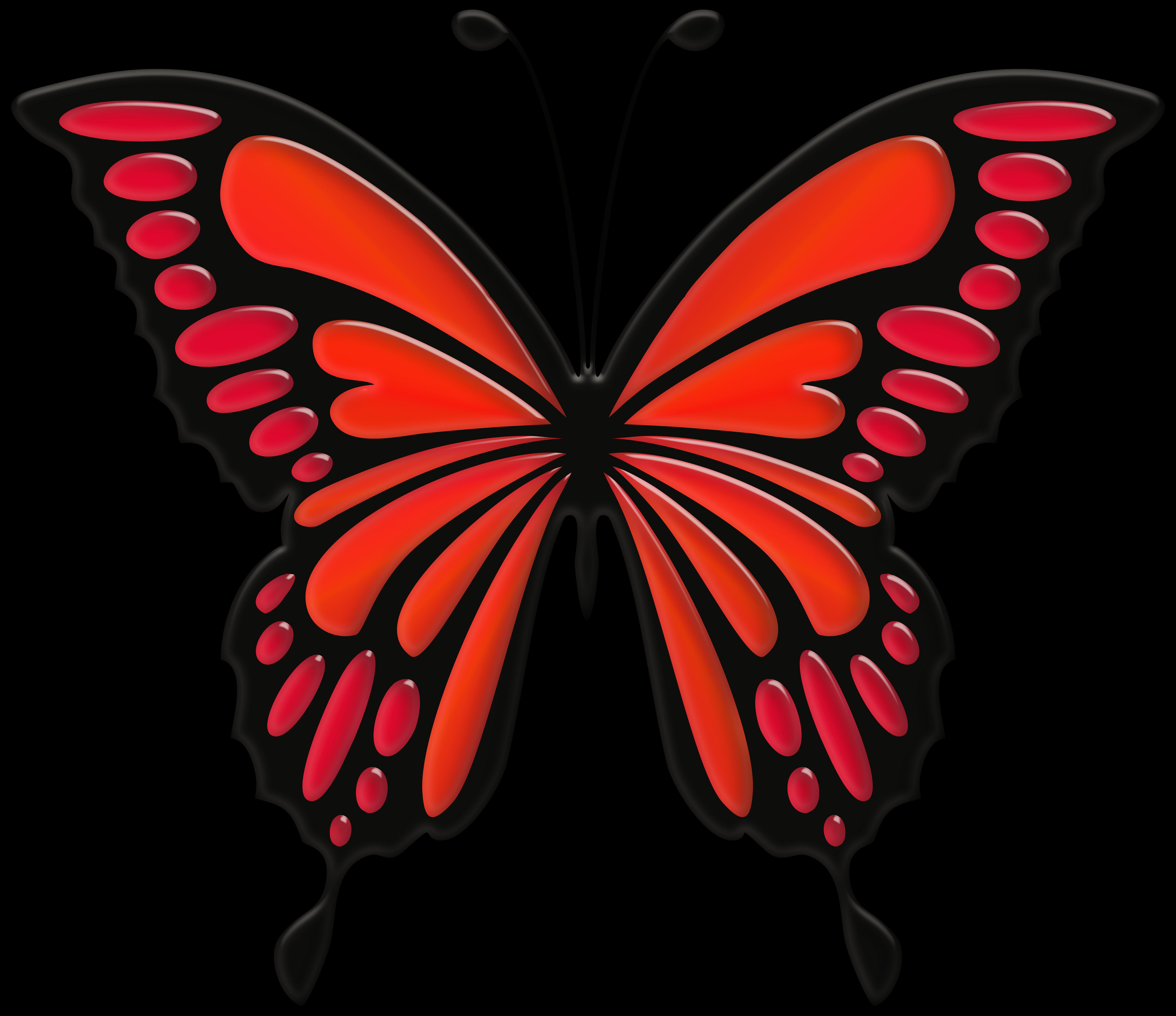 Pin på Fjärilar
