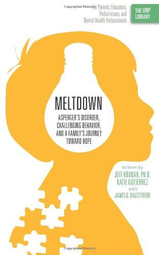 Meltdown Aspergers Disorder Challenging Behavior And A Familys